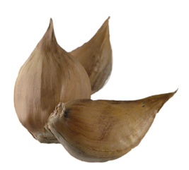 how to grow garlic from a clove indoors