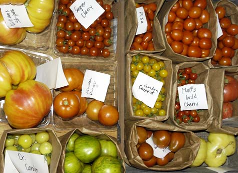 List Of Heirloom Tomatoes Southern