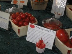 Herencia de la degustación de tomate del intercambio de semillas orgánicas de la exposición sur de fredericksburg