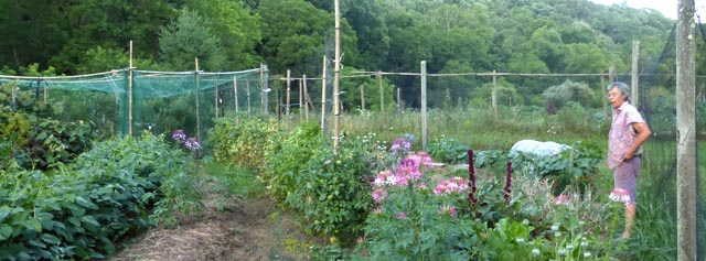 Ann Shrader in her Garden