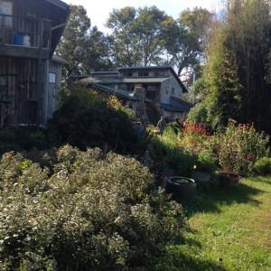Solo una pequeña parte del magnífico jardín de hierbas de Hildegard