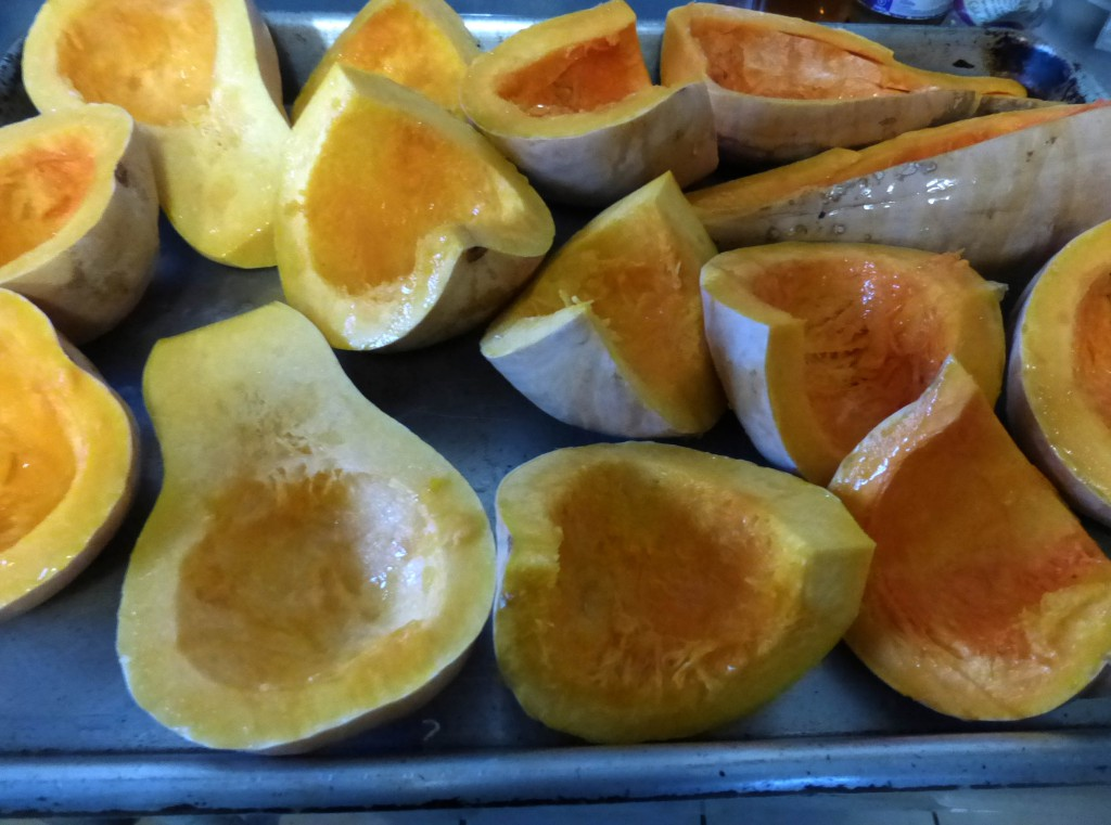 Feb2015 (45) squash for squash butter prcsd