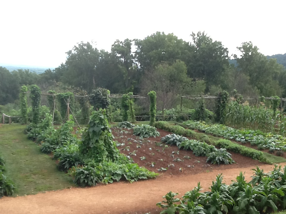Traditional Wooden Vegetable Garden Trellising At Thomas Jeffersonu0027s  Monticello