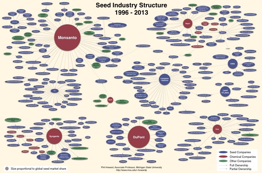 Por qué la polinización abierta | Intercambio de semillas de exposición al sur