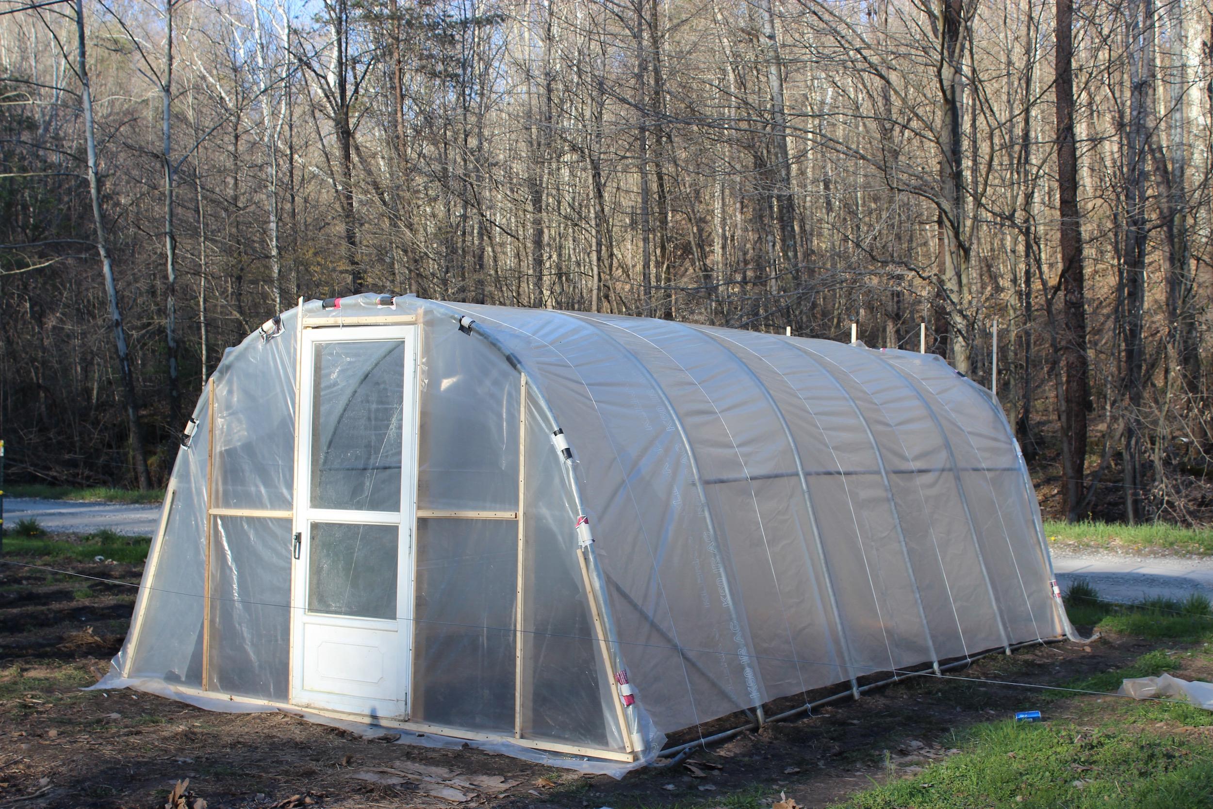 Jardinería de invierno   Intercambio de semillas de exposición al sur