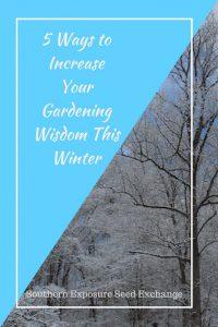 5 formas de aumentar tu sabiduría en jardinería este invierno
