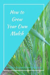 Cómo hacer tu propio mantillo
