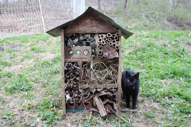 Hotel de insectos DIY | Intercambio de semillas de exposición al sur
