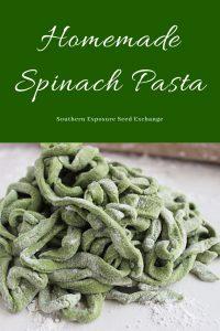 Pasta de espinacas casera | Intercambio de semillas de exposición al sur