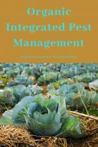 Manejo Integrado de Plagas Orgánicas | Intercambio de semillas de exposición al sur