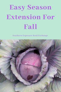 Fácil extensión de la temporada de otoño