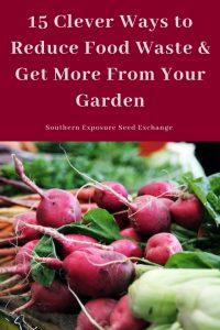 15 formas inteligentes de reducir el desperdicio de alimentos y sacar más provecho de su jardín