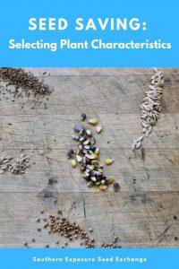 Economía de semillas: selección de las características de la planta.