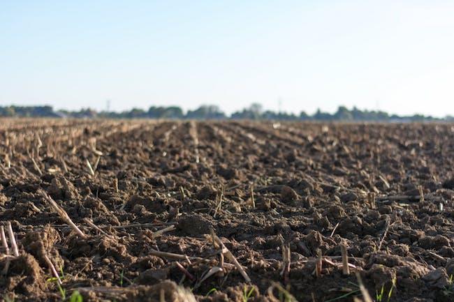 La importancia de la gestión sostenible del suelo