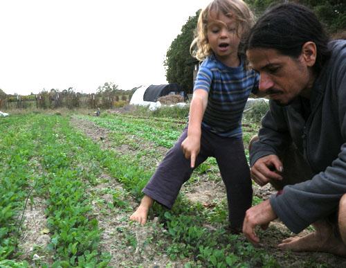 Haga crecer su organización con SESE FarmRaiser