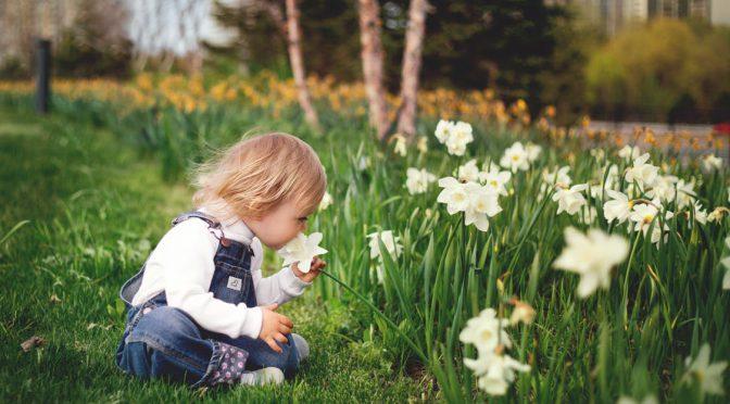 Spring Garden Activities for Kids