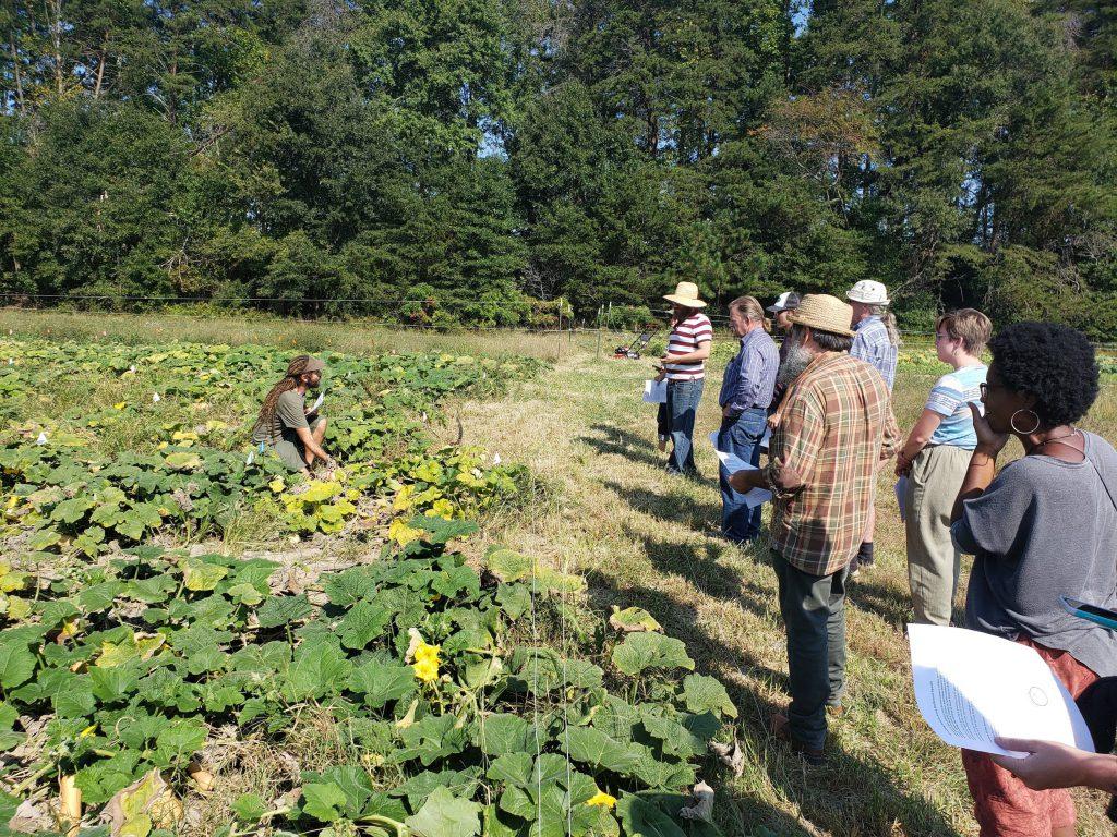 Semillas, pequeñas explotaciones y resiliencia: la historia de SESE Seeds