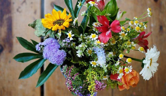 Grow a Cut flower garden