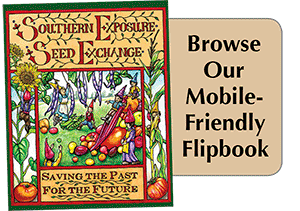 Southern Exposure Mobile-Friendly Flipbook