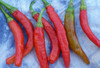 Cayenne, Carolina Hot Pepper, bulk size: 3 g