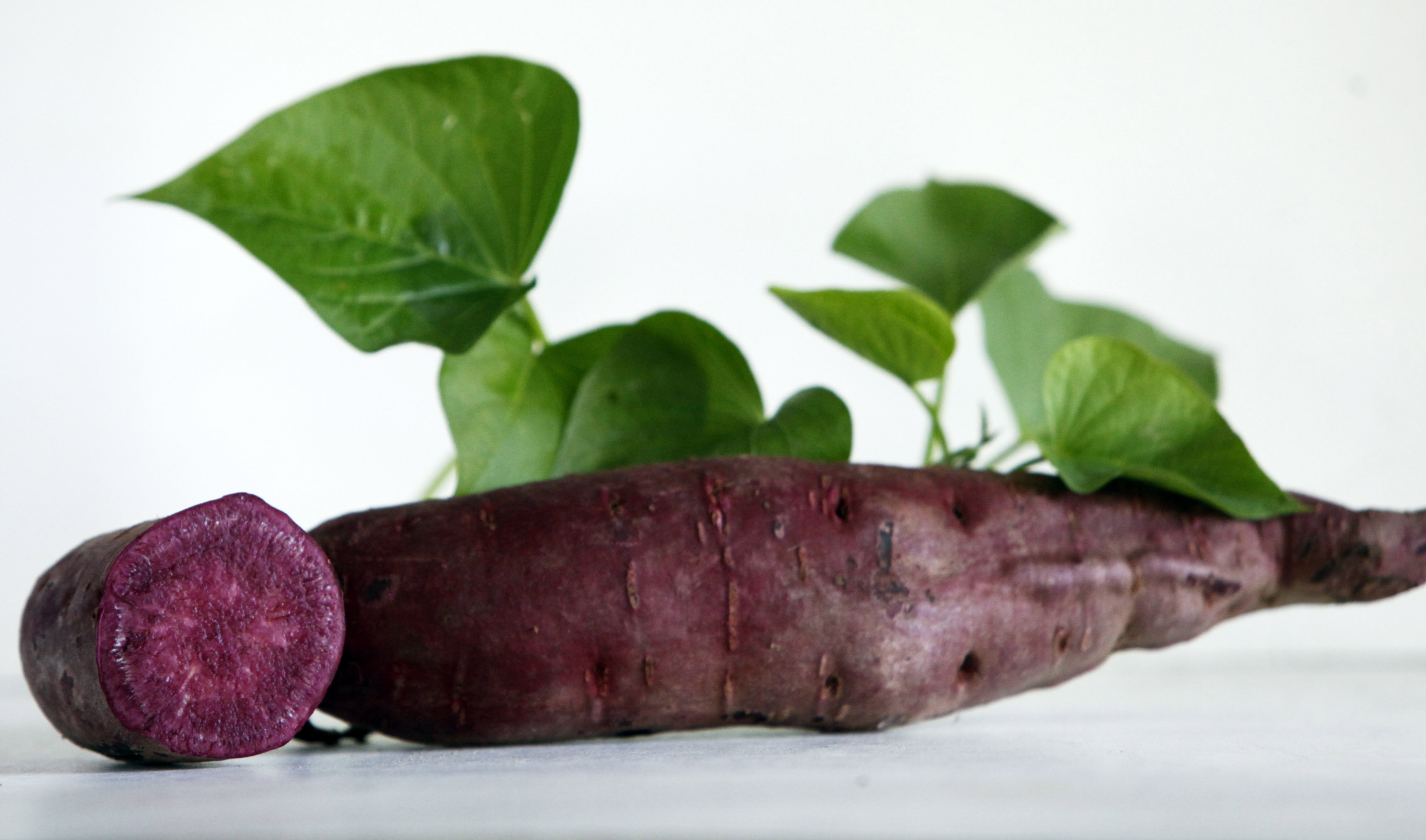 All Purple Sweet PotatoSlips Click To Enlarge