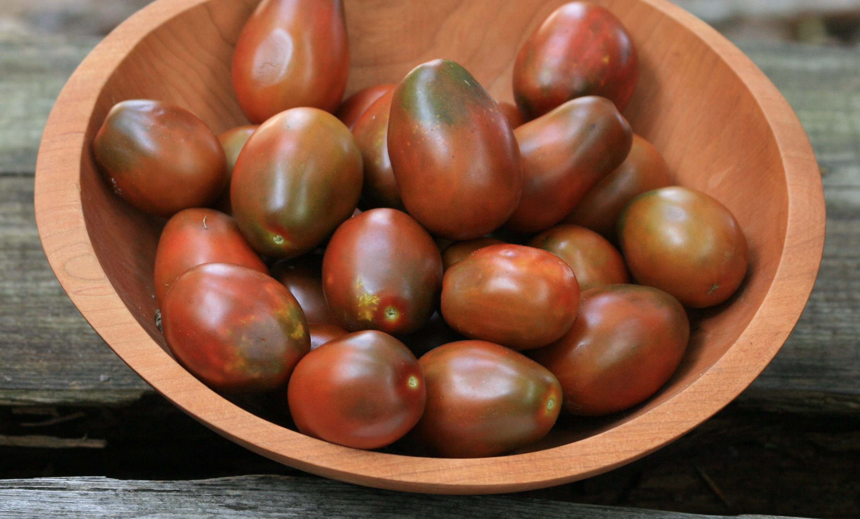 Black Plum Paste/ Processing Tomato, 0.16 g : Southern Exposure Seed ...