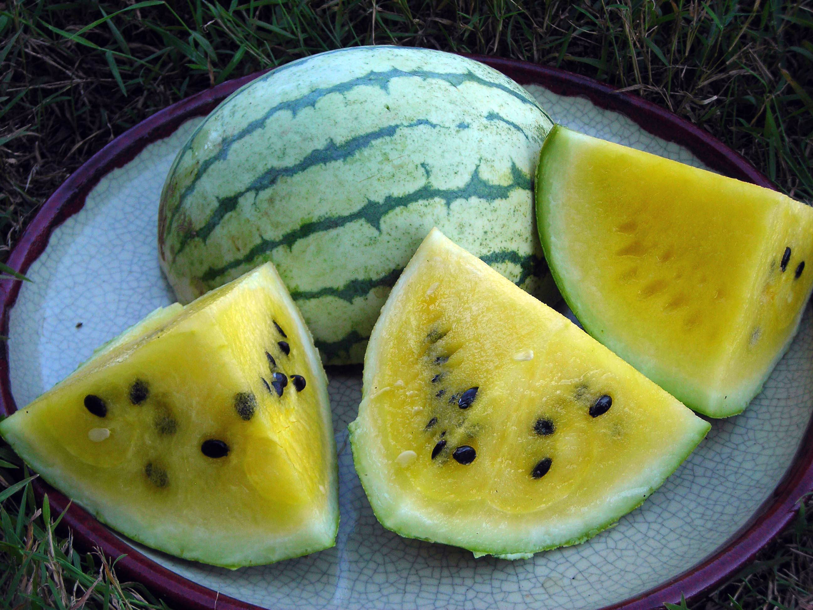 Yellow Watermelon Pictures