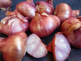 French Red Shallot, bulk size: 24 oz.