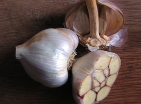 Nootka Rose Silverskin Softneck Garlic, 8 oz.