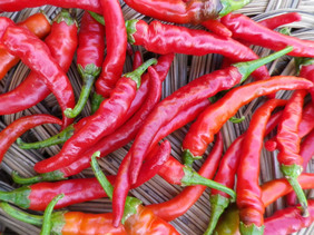 Cayenne, Long Red Hot Pepper, bulk size: 3 g