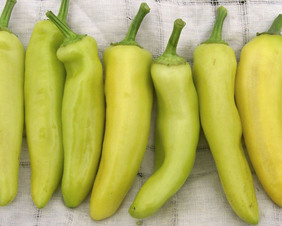 Hungarian Wax (Hot Banana) Hot Pepper, 0.3 g