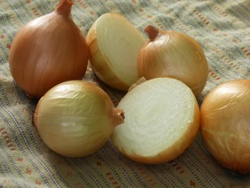 Texas Early Grano Dry Bulb Onion 3 g