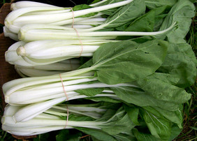 White-Stemmed Pak Choi Chinese Cabbage, 2 g