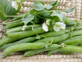 Green Arrow Dwarf Shelling (English) Pea, 28 g
