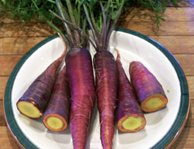 Purple Dragon Carrots, 1 g
