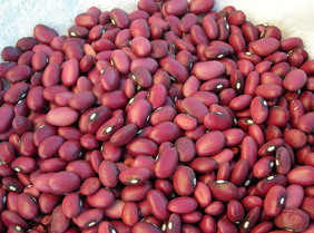 Small Red Bush Dry Bean, bulk size: 1/4 lb