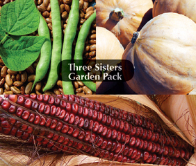 Three Sisters Garden Package