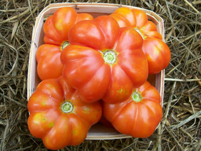 Large Red Tomato, 0.16 g