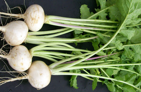 White Egg Turnip, 3 g