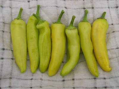 Hungarian Wax (Hot Banana) Hot Pepper 0.3 g