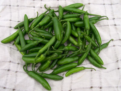 Serrano Tampiqueno Hot Pepper 3 g