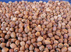 Carolina Crowder Southern Pea (Cowpea) ¼ lb