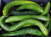 Suyo Long Asian Cucumber, bulk size: 14 g