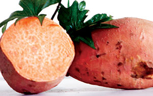 Ginseng Sweet Potato