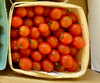 Red Cherry Tomato (Old Fashioned Red), 0.08 g