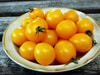 Yellow Centiflor Cherry Tomato, 0.08 g
