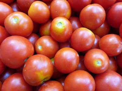 Amy's Sugar Gem Tomato 0.16 g