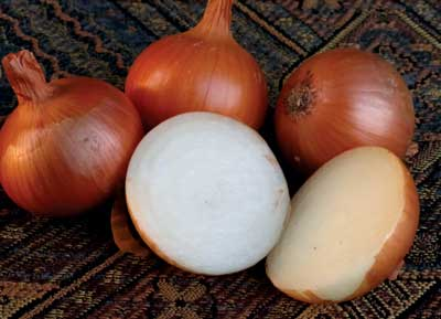 Australian Brown Dry Bulb Onion, 3 g