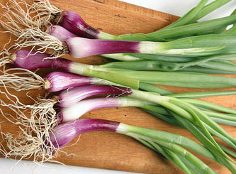 Deep Purple Bunching Onion 1 g