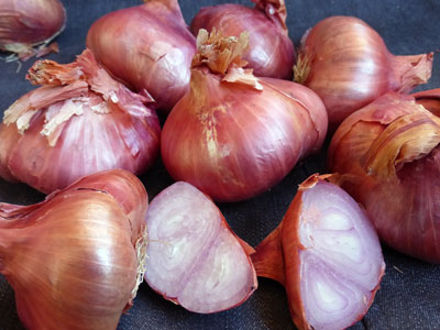 French Red Shallot 24 oz.
